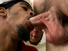 Horny black stud sucking off cock