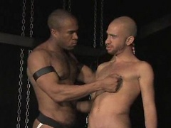Element Eclipse and Malik. Interracial bdsm scene