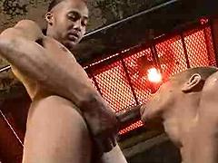 Hot ebony jock got his ass drilled
