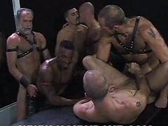 Chris Ward, Eli Horst , Harley Mancuso, Justin Southall, Logan Grey, Matt McGrath , Mitchell James, Scott Samson and Simon Cox. Horny gay bears orgy.