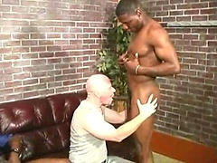 Bald mature man fucked by two black guys