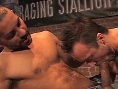 Antonio Biaggi and Xander Solis. Fucking.