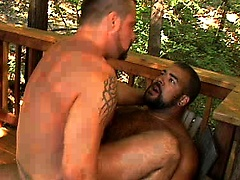 Muscle hairy men Roman Wright and Marc Angelo fucking