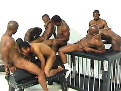 Hot black boys  D-Lyte, Dee's, Maverick Sterling, Nature Boy, Pleasure fuck