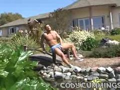 Sunny Cock