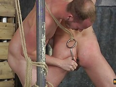 A Tight Boy Hole To Use - Tristan Crown & Sean Taylor