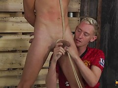 Ashton Is In A Punishing Mood - Xavier Sibley & Ashton Bradley