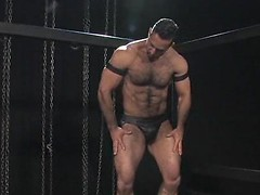Hairy muscle men Adam Champ and Logan McCree fuck