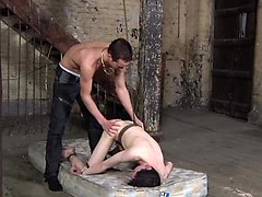 Spanked, fucked and sucked