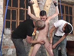 Aaron Aurora, Adam Watson, Sebastian Kain