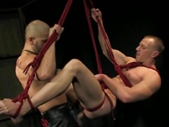 Bald hunk with big cock fucks an ass