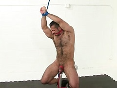 Dark haired hunk gets tied up...