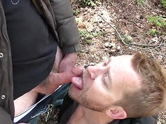 Hairy Forest Facial