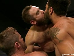 Cock Fight! Ultimate Showdown: Shawn Wolfe, Landon Conrad & Adam Ramzi