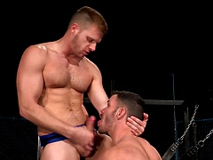 Primal - Brogan Reed and Brian Bonds