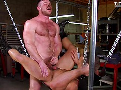 Sling: Liam Knox and Eddy Ceetee fuck in the sling factory!